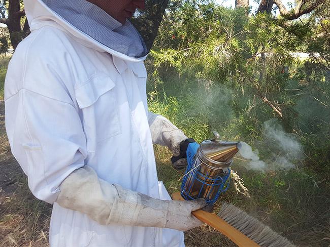 bee-smoke