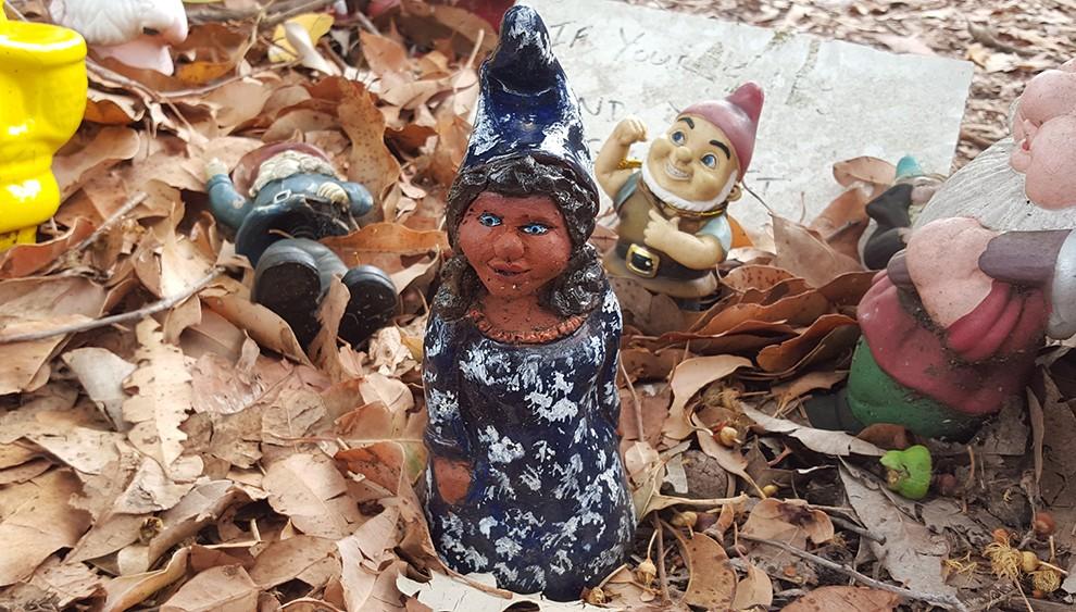 gnome-24