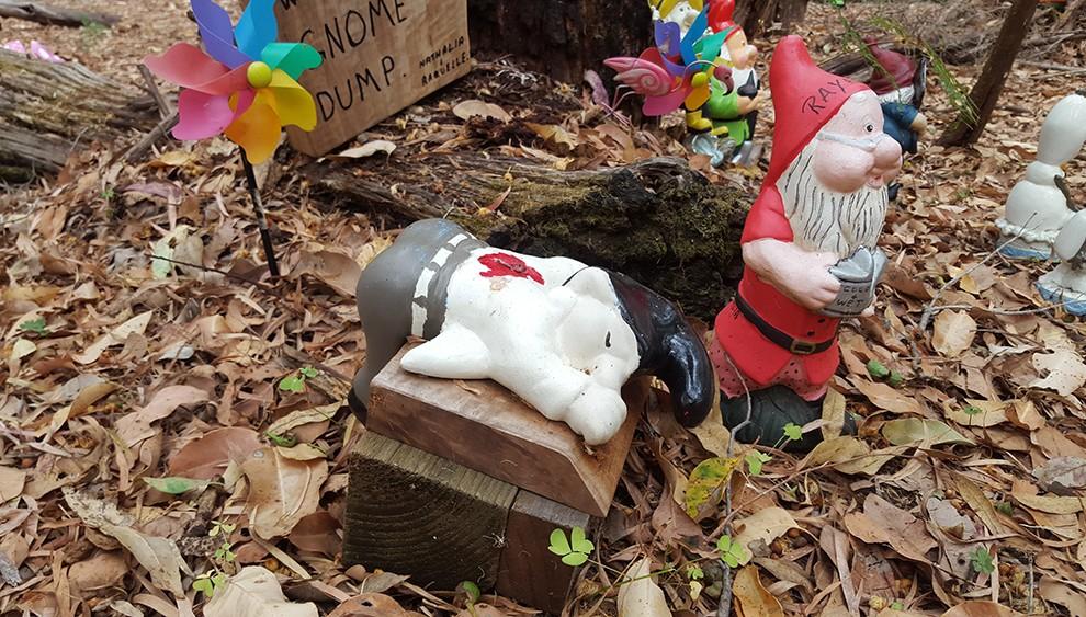gnome-31