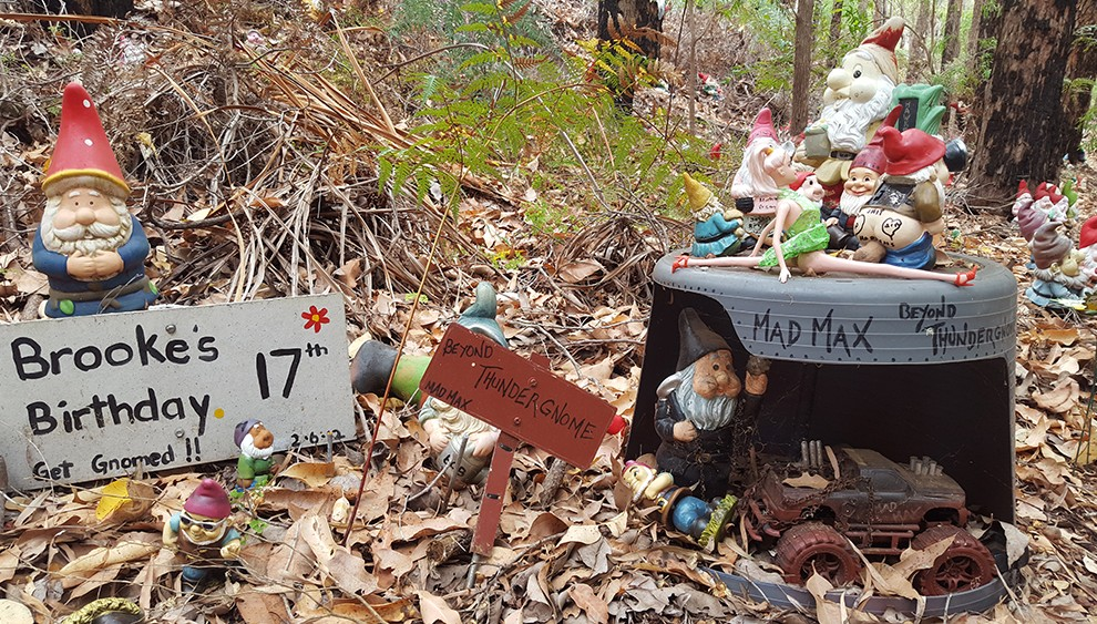 gnome-46