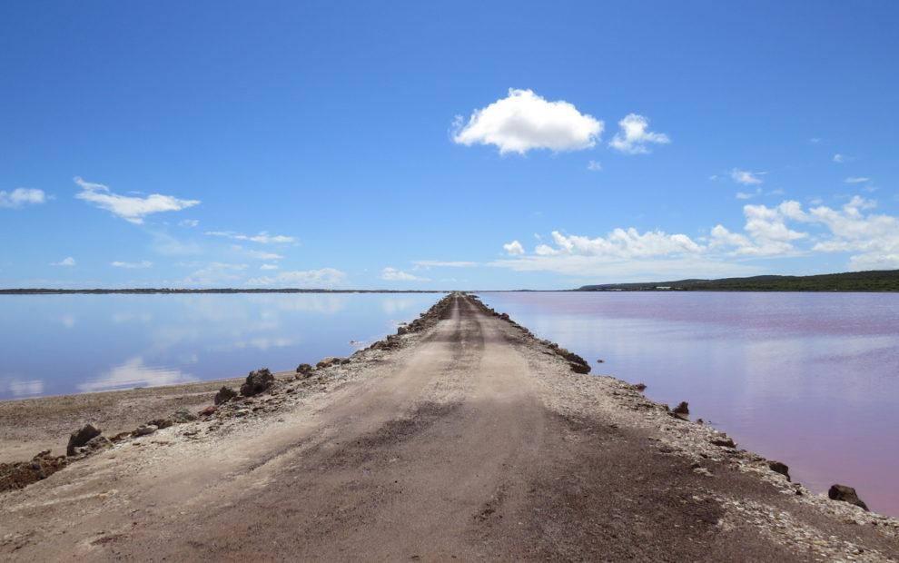 pink-lake-landscape