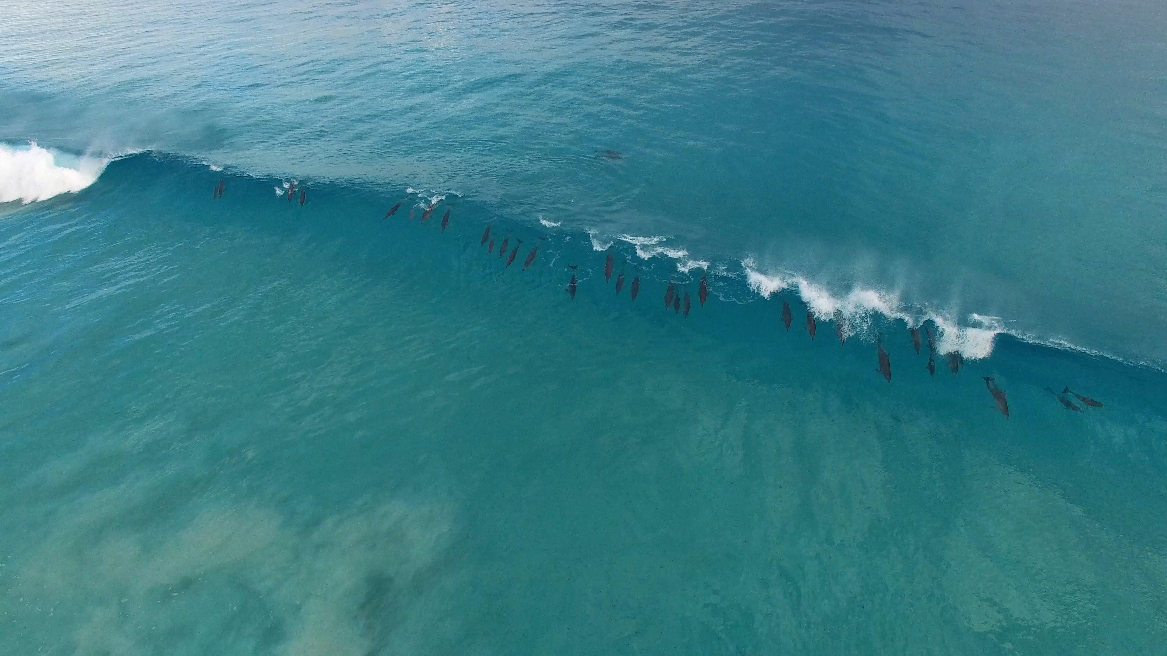 Surfing in Western Australia: Esperance
