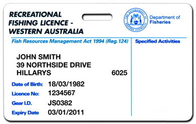 Catching abalone in western australia perth girl for Renew fishing license